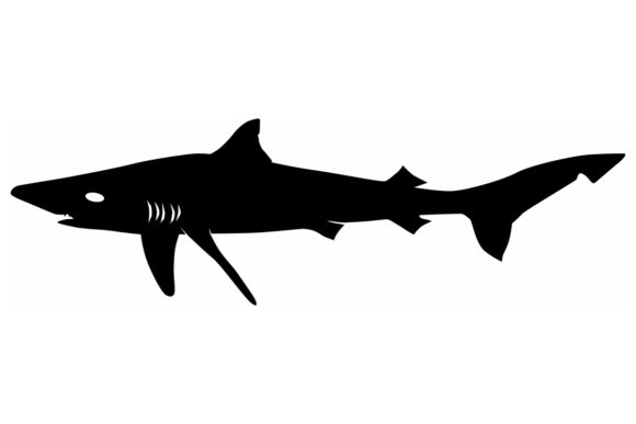 Download Free Tope Shark Silhouette Graphic By Idrawsilhouettes Creative Fabrica for Cricut Explore, Silhouette and other cutting machines.