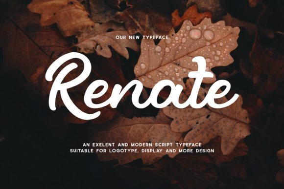Print on Demand: Renate Display Font By Fype Co. - Image 1