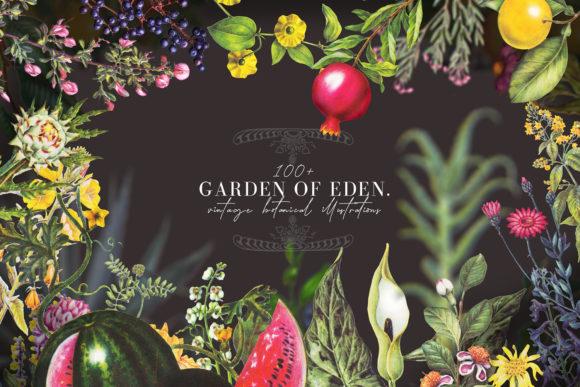 Print on Demand: Garden of Eden- Vintage Botany Set Grafik Illustrationen von kaleriiatv
