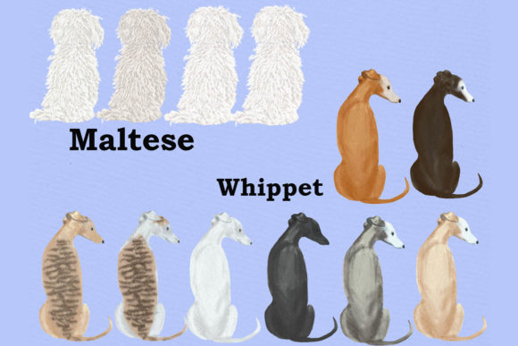 Dog Clipart Graphic Illustrations By LeCoqDesign - Image 6