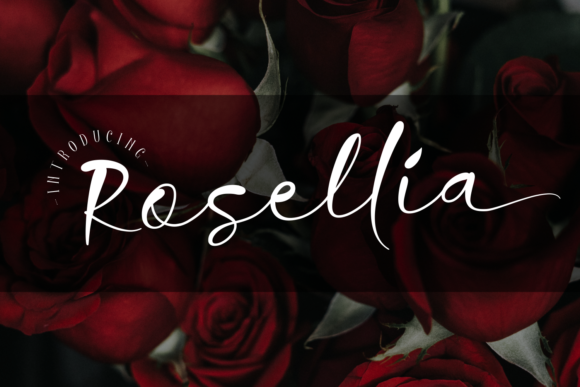 Print on Demand: Rosellia Script & Handwritten Font By Dani (7NTypes)
