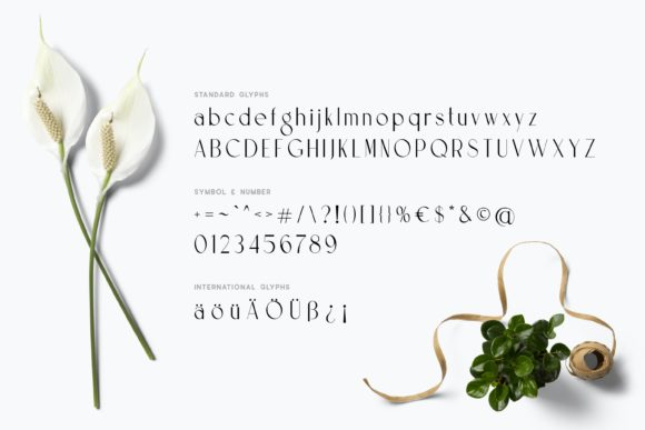 Print on Demand: Prestigious Display Font By Fype Co. - Image 6