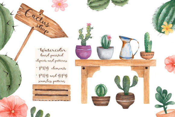 Watercolor Cactus Shop Graphic Illustrations By Maya Navits