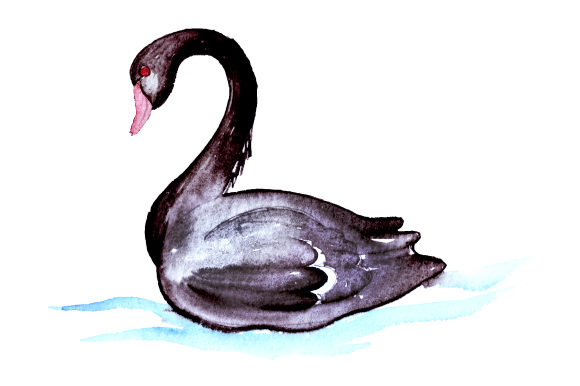 Download Free Black Swan In Watercolor Style Svg Cut File By Creative Fabrica for Cricut Explore, Silhouette and other cutting machines.