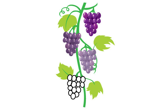 Abstract Grape Vine Food & Drinks Craft Cut File By Creative Fabrica Crafts