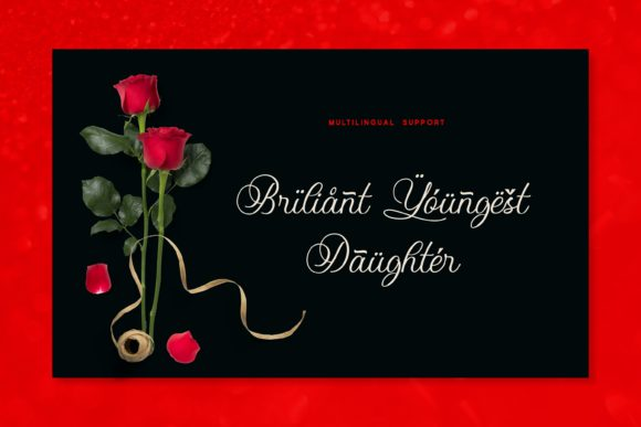 Print on Demand: Balgona Display Font By Fype Co. - Image 7