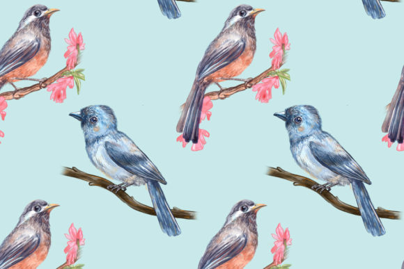 Beautiful Birds Graphic Patterns By info.neilhubert
