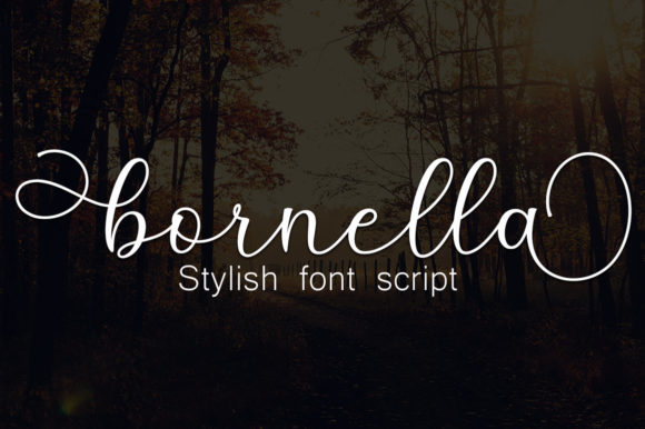 Print on Demand: Anisha Script & Handwritten Font By Greentype - Image 3
