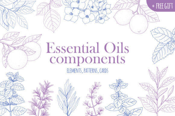 Print on Demand: Essential Oils Components Graphic Objects By annamagenta