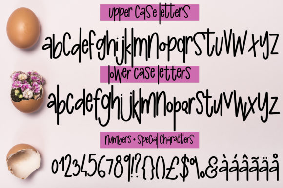 Print on Demand: Poopy McJerkbeak Display Font By freelingdesignhouse - Image 2