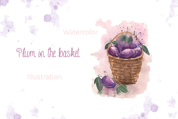 Watercolor Plum in the Basket. Graphic Illustrations By Maya Navits