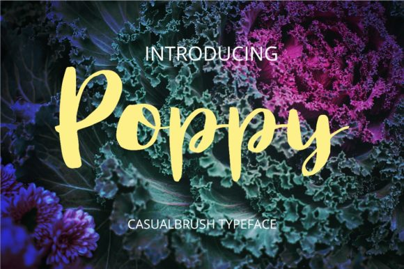 Print on Demand: Poppy Script & Handwritten Font By BitongType