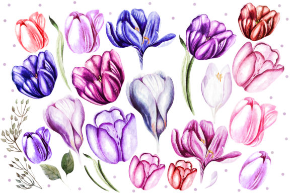 Watercolor Spring Tulips & Crocus Graphic Objects By Knopazyzy - Image 4