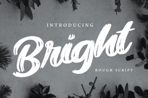 Print on Demand: Bright Script & Handwritten Font By Vunira