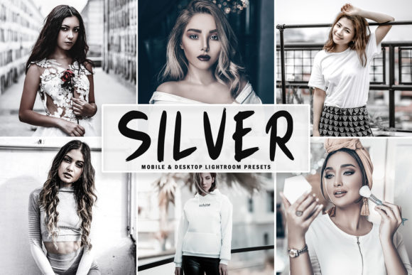 Print on Demand: Silver Lightroom Presets Pack Graphic Actions & Presets By Creative Tacos