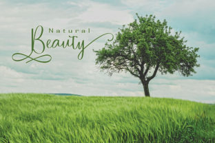 Print on Demand: Nature Script & Handwritten Font By parawtype 2