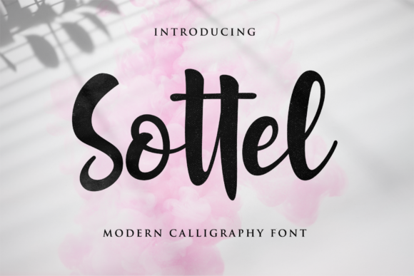 Print on Demand: Sottel Script Script & Handwritten Font By LetterBeary - Image 1
