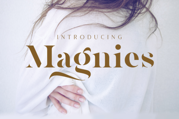 Print on Demand: Magnies Serif Font By Arterfak Project