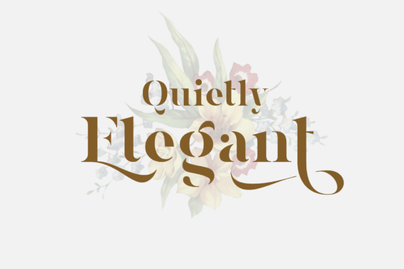 Print on Demand: Magnies Serif Font By Arterfak Project - Image 2