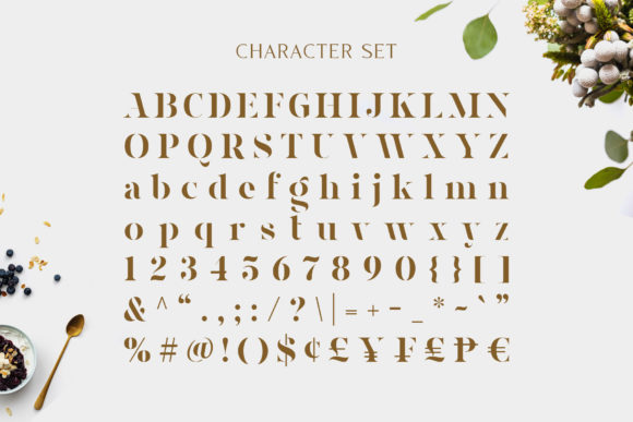 Print on Demand: Magnies Serif Font By Arterfak Project - Image 7