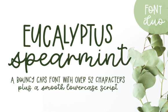 Print on Demand: Eucalyptus Spearmint Sans Serif Font By jordynalisondesigns