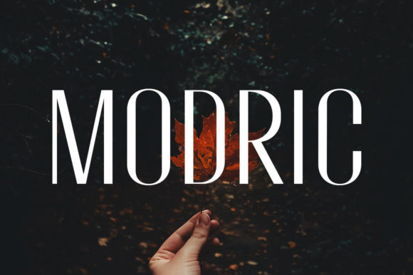 Print on Demand: Modric Sans Serif Font By motokiwo