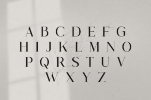 Print on Demand: Gorgeous Serif Font By Salt and Pepper Fonts 6