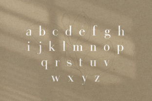Print on Demand: Gorgeous Serif Font By Salt and Pepper Fonts 7