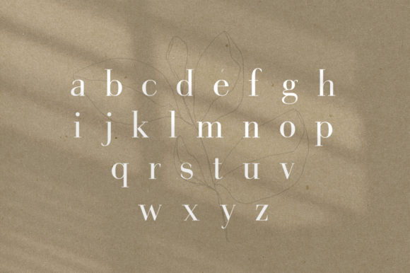 Print on Demand: Gorgeous Serif Font By Salt & Pepper Designs - Image 7