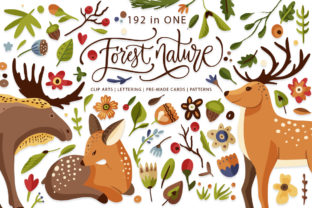 Print on Demand: Forest Nature. Animal & Flora Set. Gráfico Ilustraciones Por Red Ink