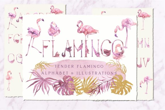 Tender Flamingo Alphabet Graphic Illustrations By Cat In Colour