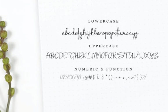 Print on Demand: Samantha Script & Handwritten Font By Baraproject87 - Image 5