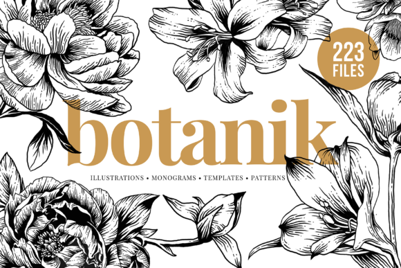 Floral & Botanical Illustration Bundle Graphic Illustrations By roughedgessupply