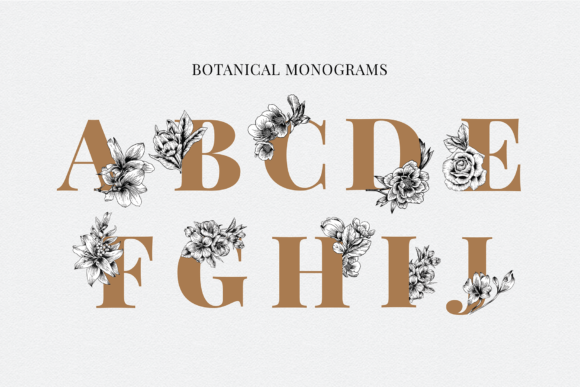 Floral & Botanical Illustration Bundle Graphic Illustrations By roughedgessupply - Image 12