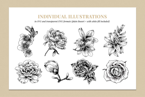 Floral & Botanical Illustration Bundle Graphic Illustrations By roughedgessupply - Image 2