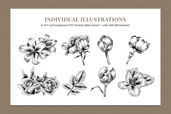 Floral & Botanical Illustration Bundle Graphic Illustrations By roughedgessupply - Image 3