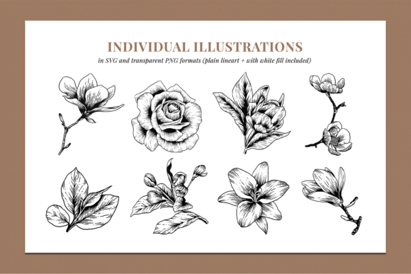 Floral & Botanical Illustration Bundle Graphic Illustrations By roughedgessupply - Image 4