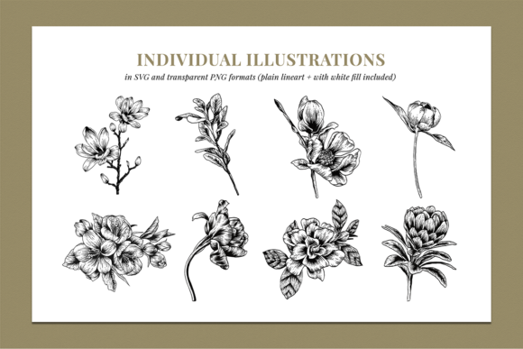 Floral & Botanical Illustration Bundle Graphic Illustrations By roughedgessupply - Image 5