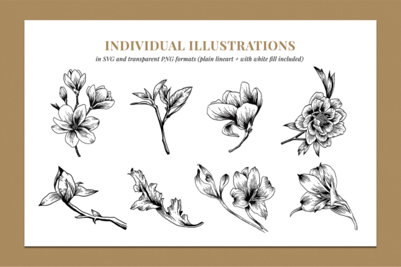 Floral & Botanical Illustration Bundle Graphic Illustrations By roughedgessupply - Image 6
