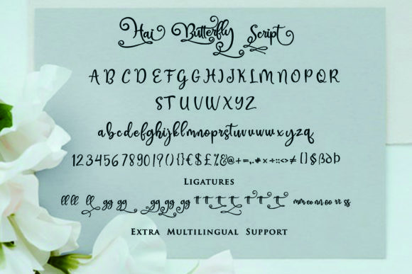 Print on Demand: Hai Butterfly Duo Script & Handwritten Font By Girinesia - Image 8