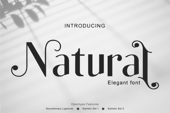 Print on Demand: Natural Serif Font By ed.creative