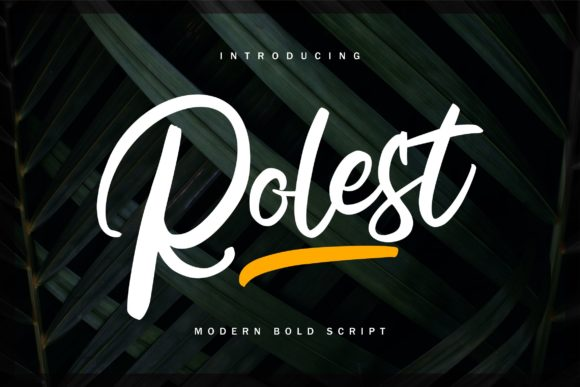 Print on Demand: Rolest Script & Handwritten Font By Vunira