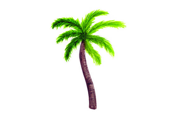 Download Free Palm Tree Watercolor Svg Cut File By Creative Fabrica Crafts for Cricut Explore, Silhouette and other cutting machines.