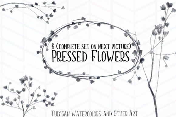 Print on Demand: 8 Pressed Flowers Graphic Illustrations By Tubiganart