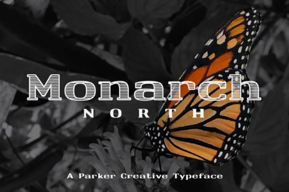 Print on Demand: Monarch Slab Serif Font By aparker1988