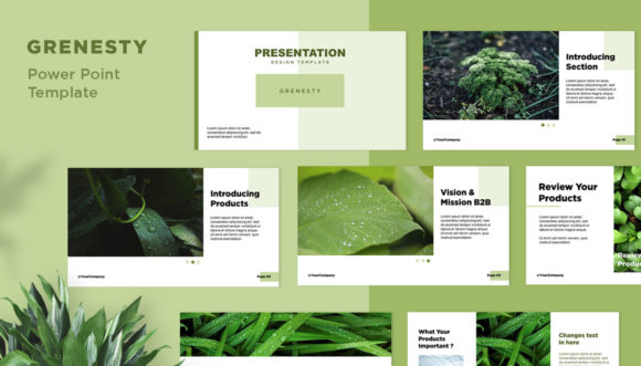 Presentation Design Template - Grenesty Graphic Presentation Templates By fadilahridwan69 - Image 1