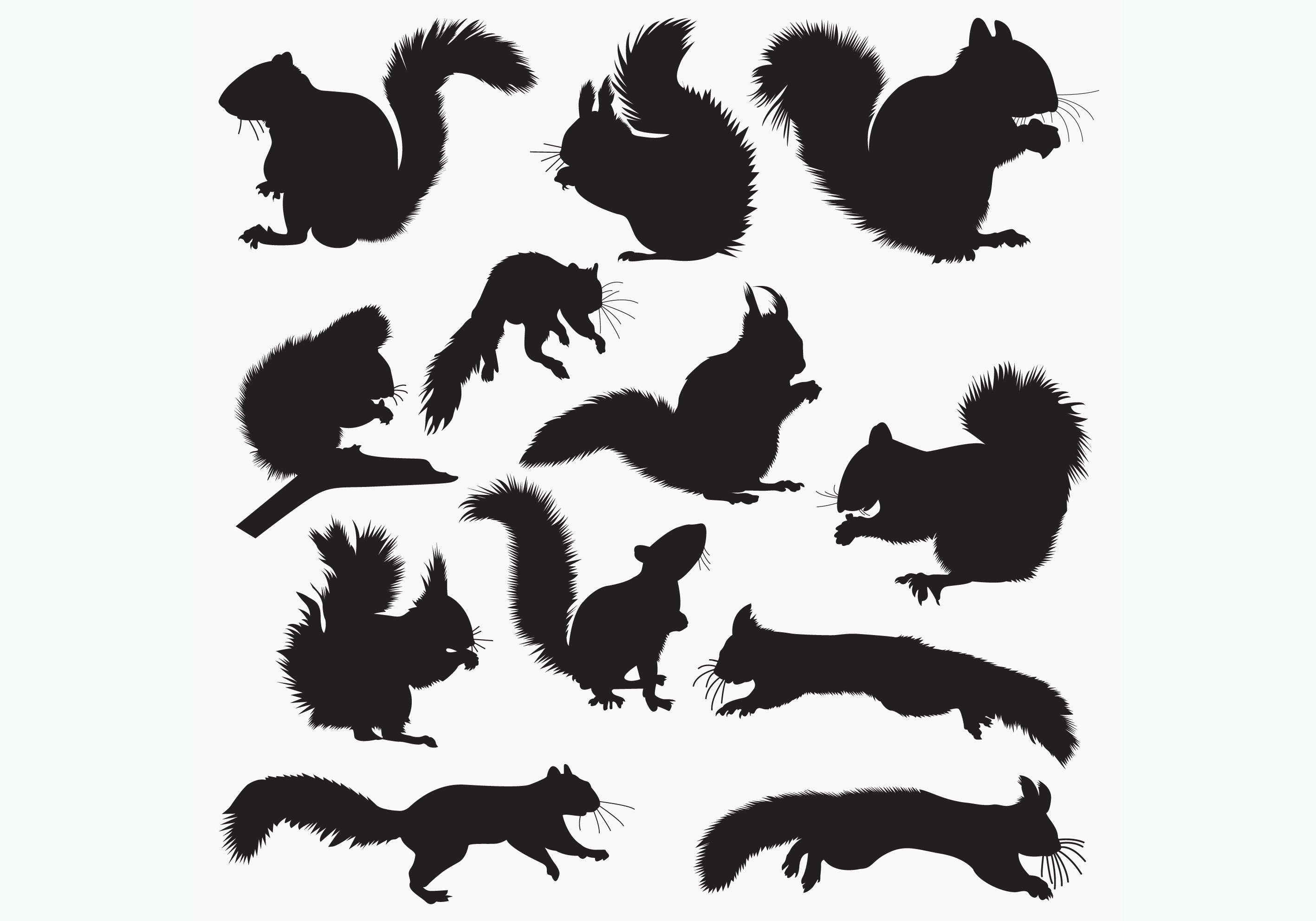 Download Free Squirrel Silhouettes Graphic By Octopusgraphic Creative Fabrica for Cricut Explore, Silhouette and other cutting machines.
