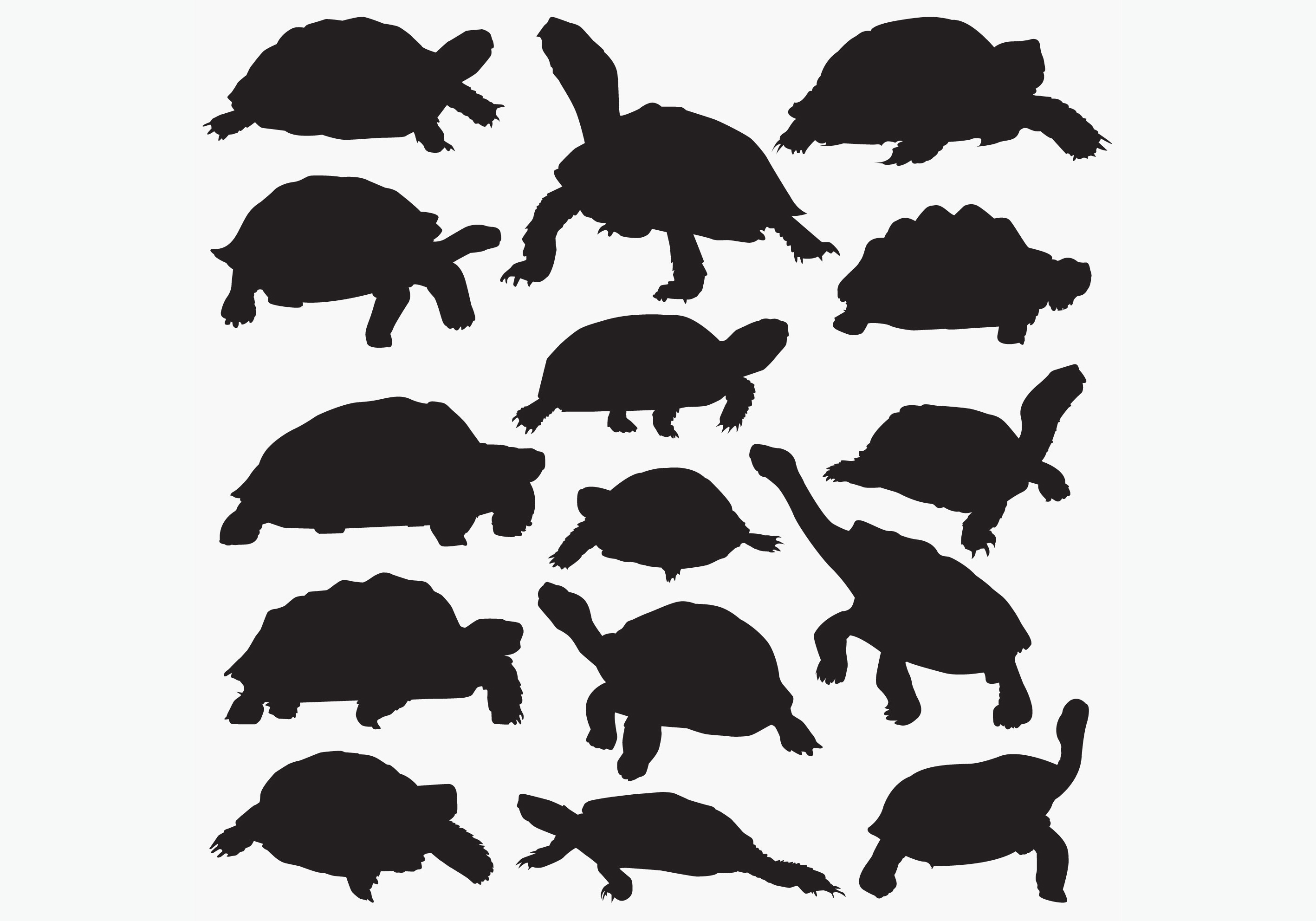 Download Free Tortoise Silhouettes Graphic By Octopusgraphic Creative Fabrica for Cricut Explore, Silhouette and other cutting machines.