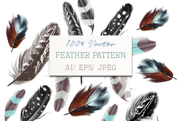 Vector Colorful and Engraved Feathers Graphic Patterns By fleurartmariia