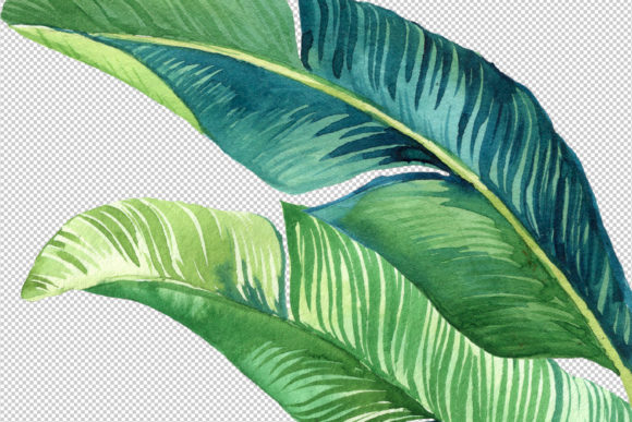 Tropic Leaves & Flowers Watercolor Set Graphic Illustrations By lena-dorosh - Image 4